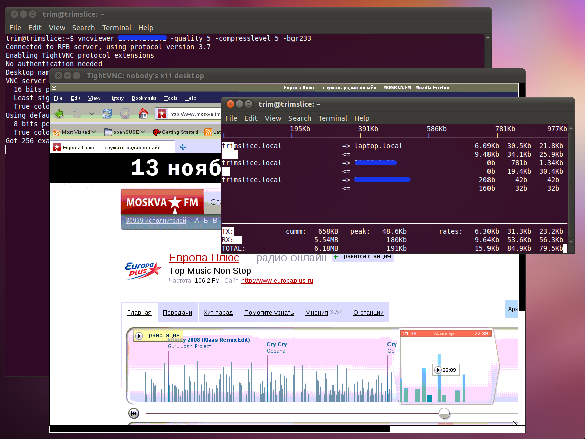 Рисунок 2. VNC Viewer работает в любых средах и на любых архитектурах